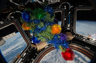Christmas tree in the Cupola
